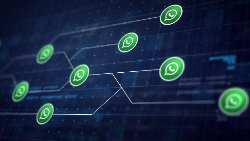 Como Funciona o WhatsApp Business?